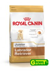 Labrador Retriever Labradorhund Junior 12kg