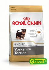 Yorkshire Terrier Junior 12x0,5kg